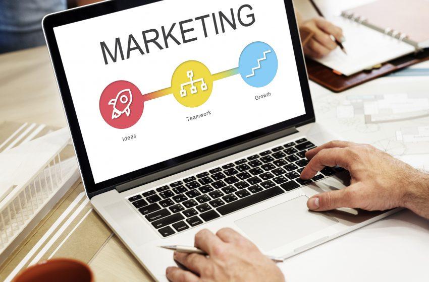 Marketingul face diferenta intre succes si esec in orice afacere