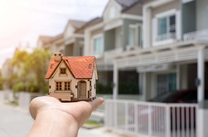 Domina Imobiliare: Programul Prima Casa