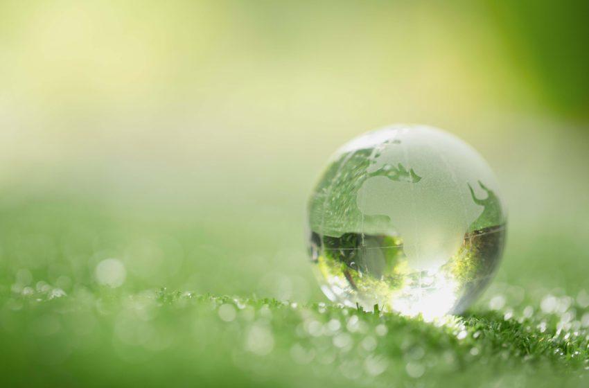 Fond de investitii pentru firme din domeniul energiei verzi, lansat de catre Amazon