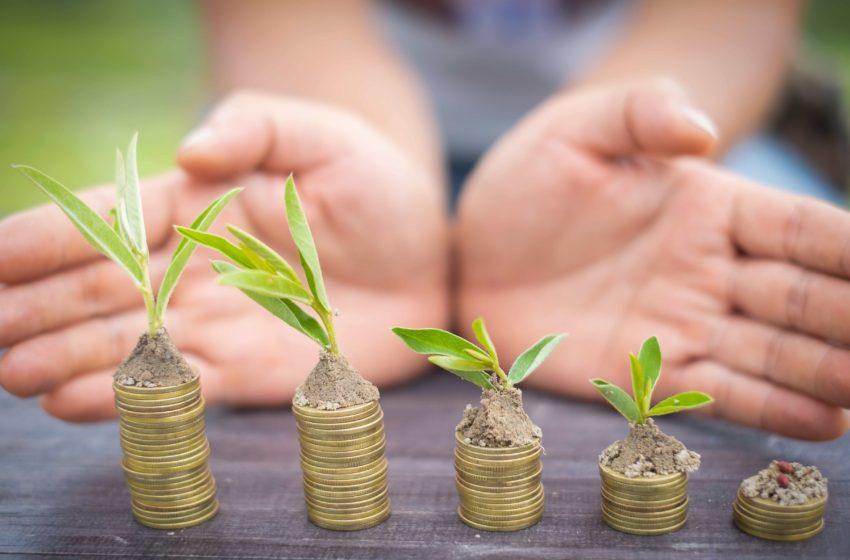 Produse agricole promovate cu fonduri europene