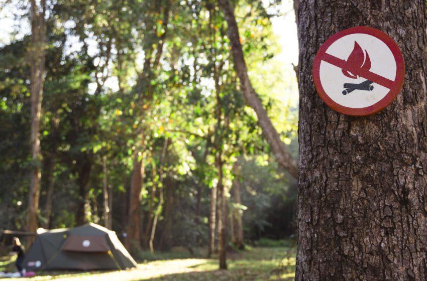 Comunicat de presa APIA privind interdictia arderii miristilor si a resturilor vegetale pe terenul arabil, precum si a vegetatiei pajistilor permanente