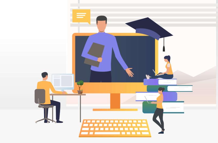 Finantari pentru firmele IT de educatie