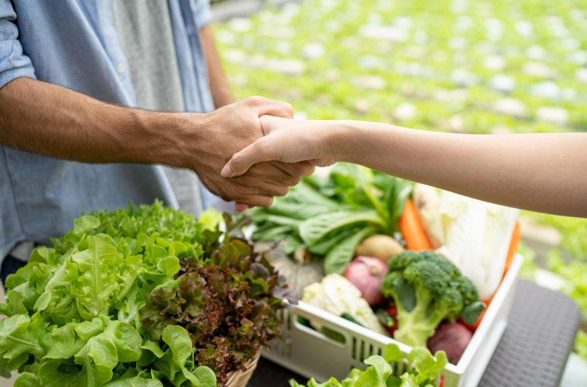 APIA lanseaza scheme noi de sprijin pentru fermieri