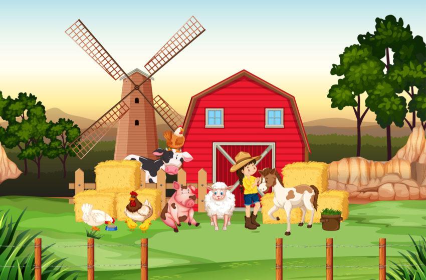 Agentia de Plati si Interventie pentru Agricultura efectueaza plata ajutorului de stat in sectorul cresterii animalelor