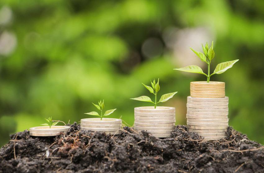 APIA va rambursa credite raportate din 2019 pentru 94.515 de beneficiari