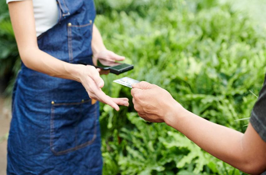 Avans APIA 2020 – In Gorj numarul fermierilor la plata este de 10.097