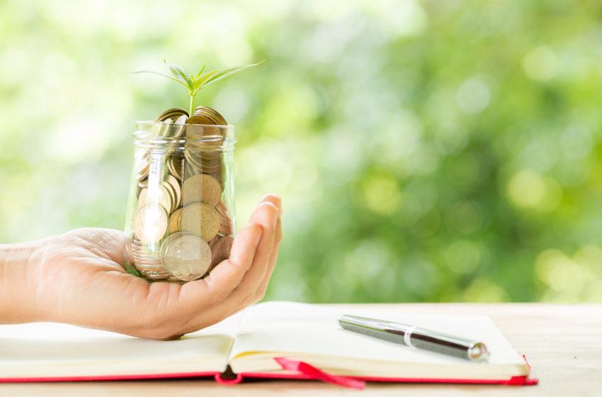 O noua platforma de educatie financiara a fost lansata